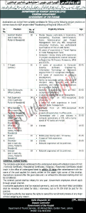 Director Jobs at Department of Tourist Services Punjab 2021