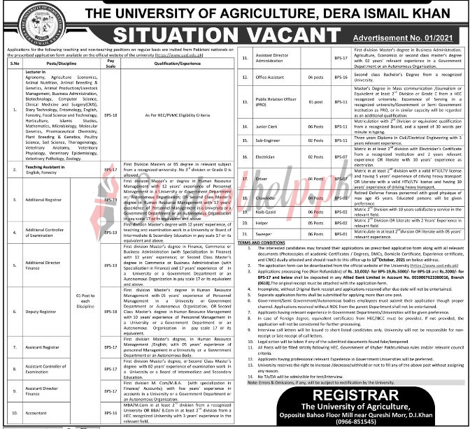 Lecturer Jobs 2021 at The University of Agriculture Dera Ismail Khan